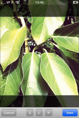 iOS Image Editor screenshot