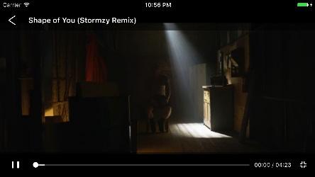 VGPlayer screenshot