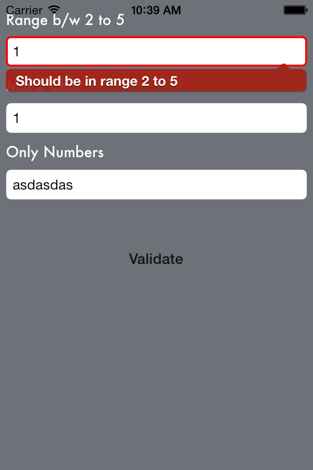 iOSValidator screenshot