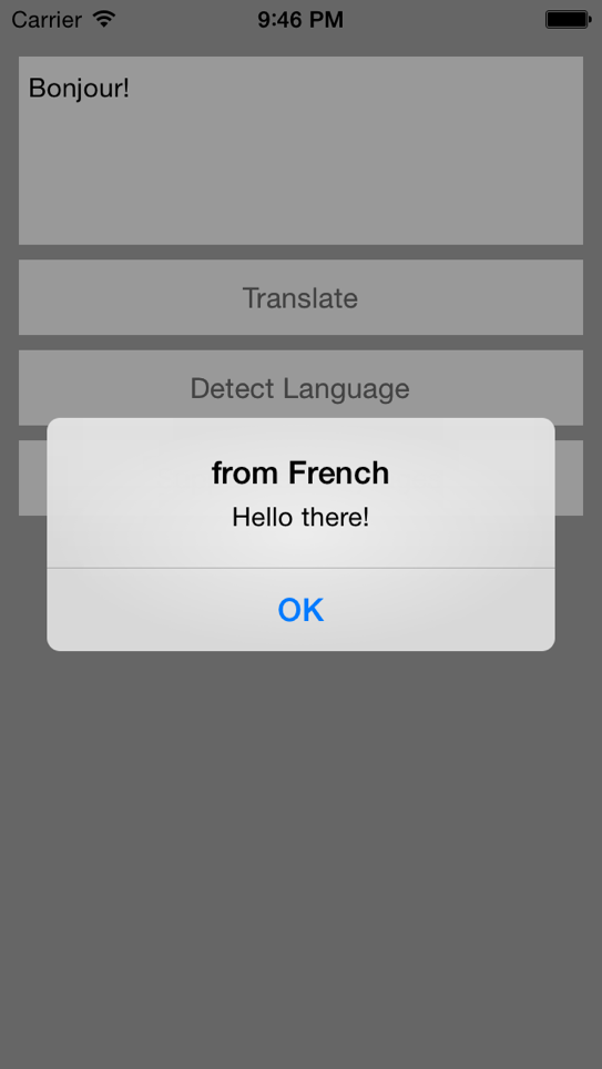 FGTranslator screenshot