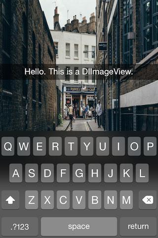 DIImageView screenshot