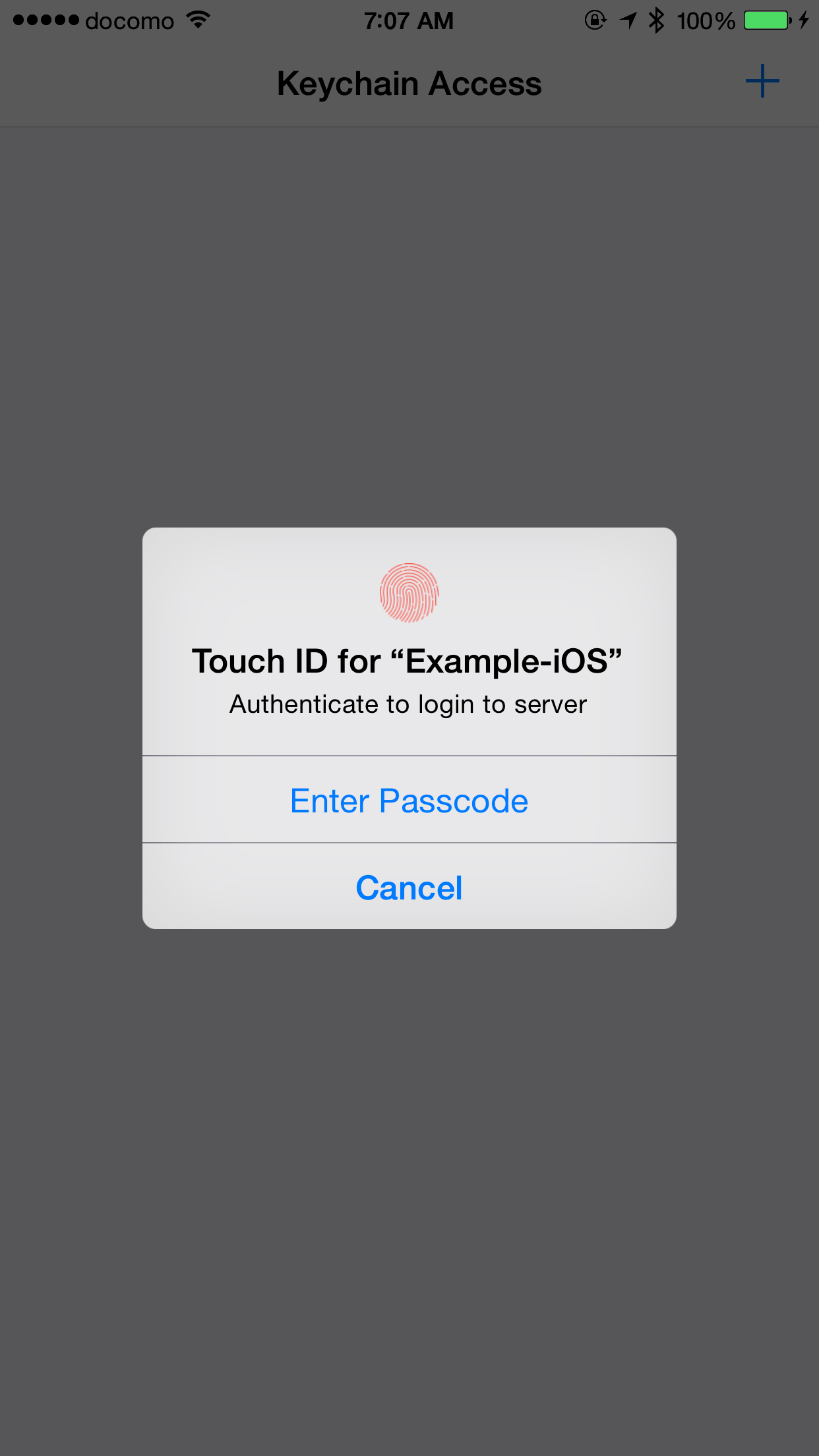 KeychainAccess screenshot