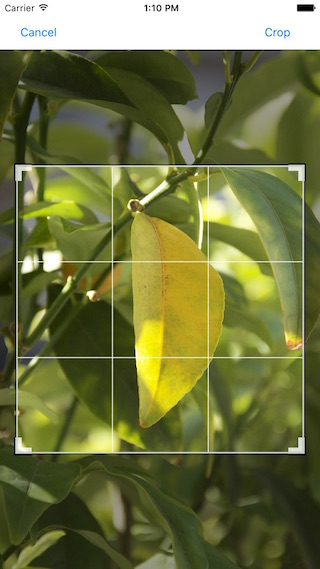 BRImagePicker (Whatsapp type Image picker) screenshot
